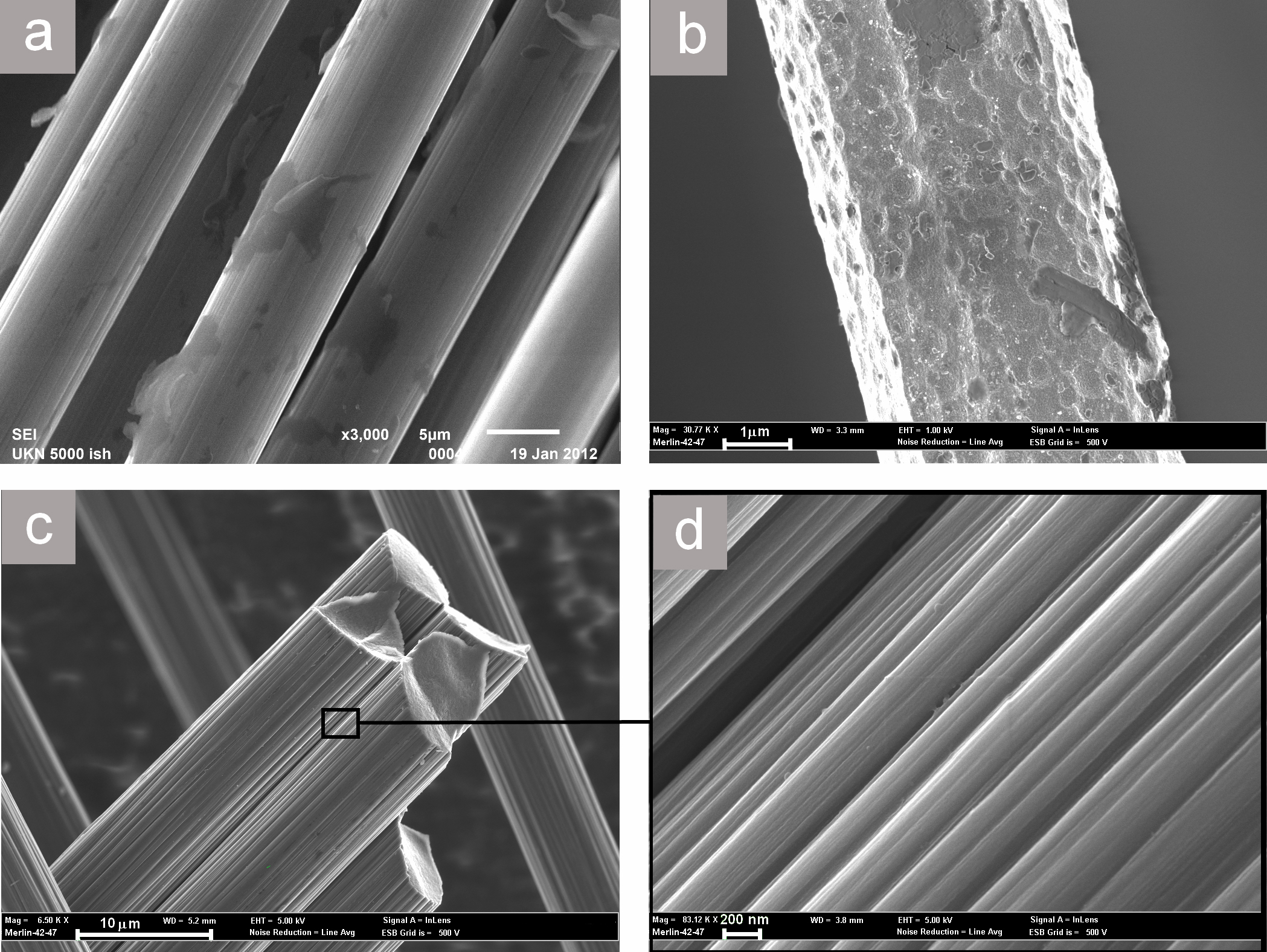 Composite materials based on the thermoplastic matrix reinforced with fibers and fabrics